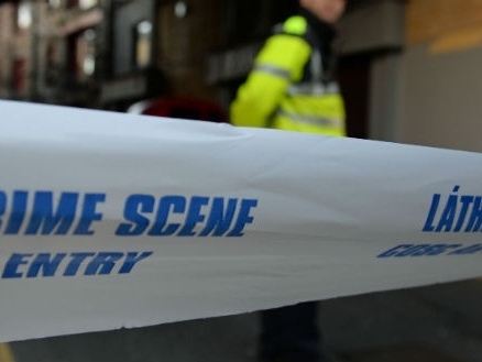 Man in critical condition after Co Limerick assault