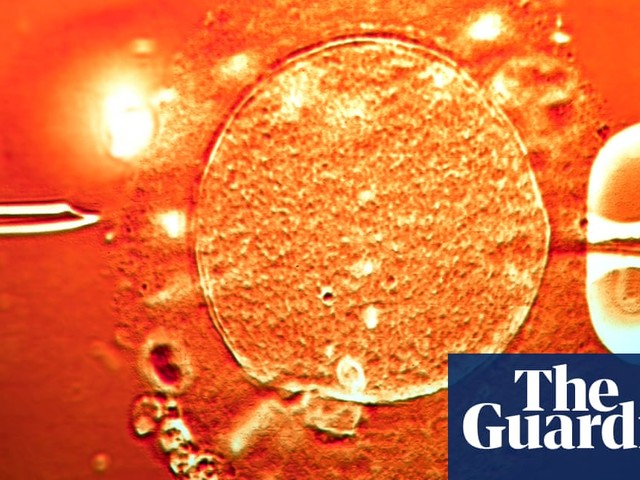 Canada IVF doctor loses licence for using wrong sperm – including his own