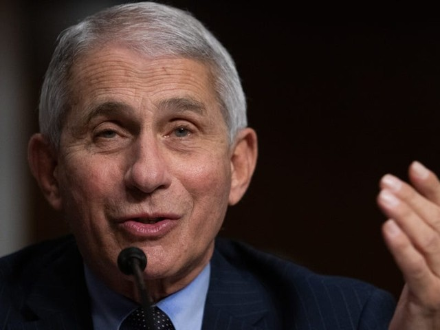 'The cavalry is on the way': Fauci says Americans should 'double down' on COVID-19 precautions as we reach the final stretch before the first vaccines