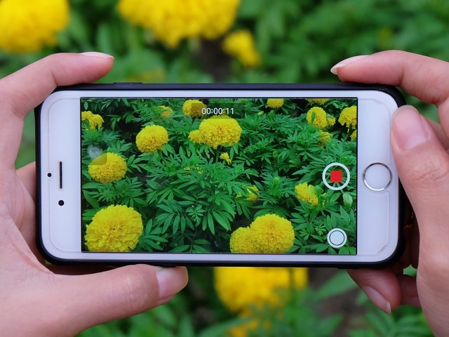 How to send a video from an iPhone to an Android phone in 3 different ways