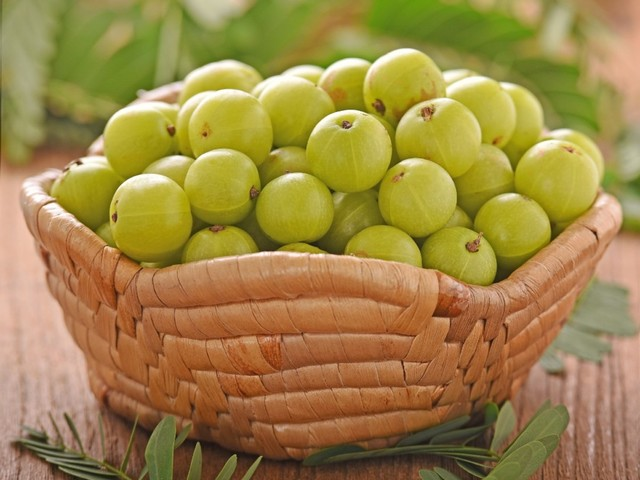 What Is Indian Gooseberry and Its Benefits