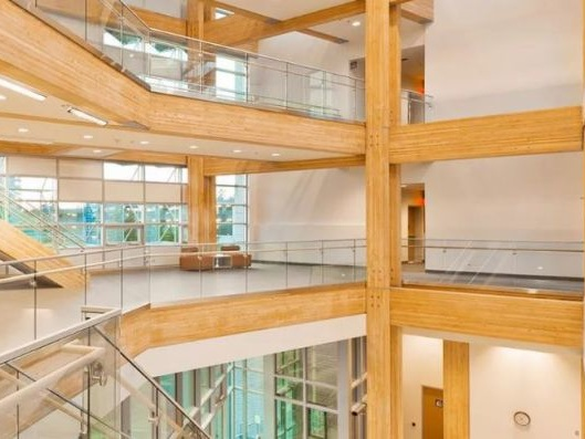 The Hype Is Now Wood For Sustainable Building