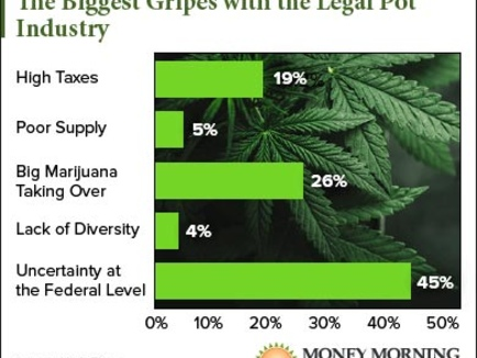 Why People Worry About the Marijuana Industry – and Why They're Wrong