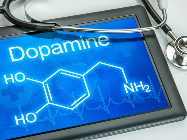 New study reveals yin-yang personality of dopamine