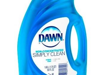 Walmart: Free Dawn Dish Soap after rebate!