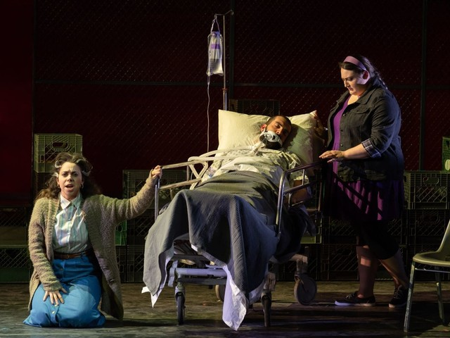 Dogs, snakes and piccolos: New operas take WNO stage