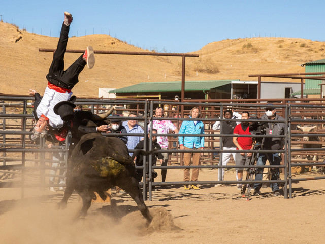 'Jackass Forever' Trailer Features Cannon Fodder, A Bull Stunt Gone Awry And Even Some Nostalgia
