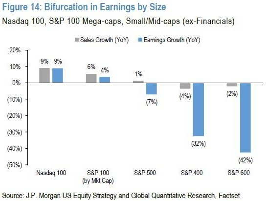 """A Market Of Just 5 Stocks"": Earnings Season Confirmed ""Winner-Take-All"" Phenomenon Is Accelerating"