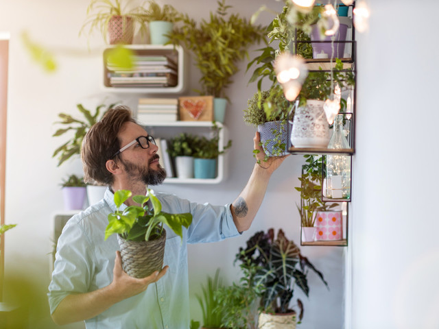 Millennials say being a 'plant parent' is harder than they expected