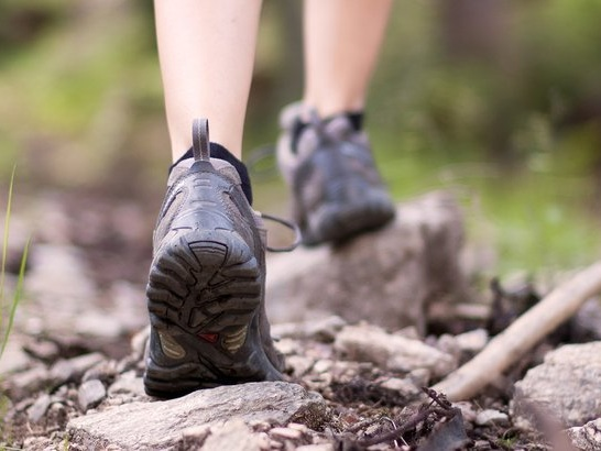 The Best Budget Hiking Boots for Summer Adventures