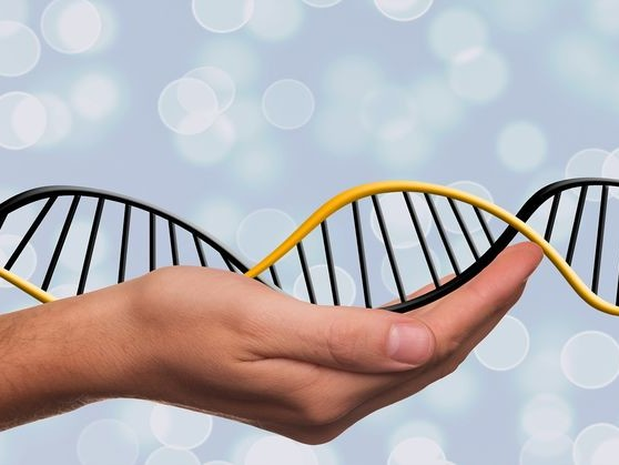 Family Secrets Revealed by Modern Genetics Testing