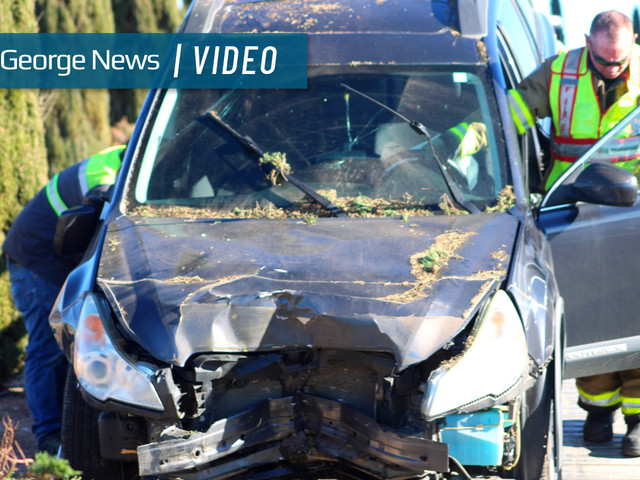 SUV takes out tree, 100 feet of fencing on Red Cliffs Drive