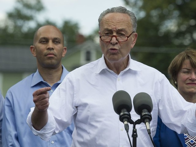 Democrats Focus on Economic Issues to Rebuild After Election Losses