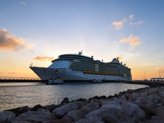 Why you should send your comments to the CDC so cruises can restart