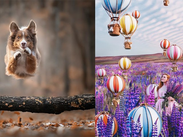 19 of the most eye-catching photos taken in 2019