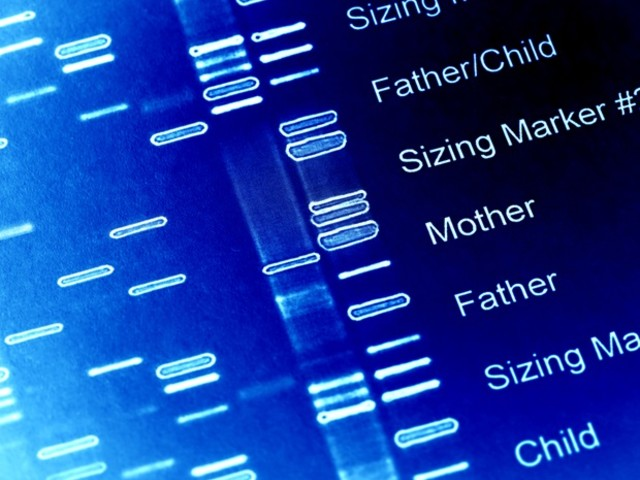 Scientists develop new genetic tool to modify and understand gene function