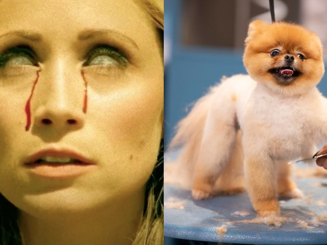 Amazon scares up more Etheria and HBO Max has a Haute Dog