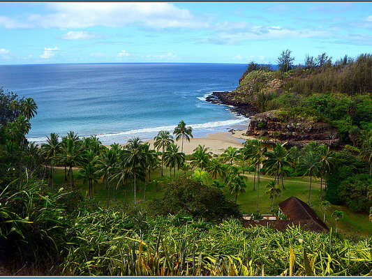 Hawaiian Air – $564: New York – Kauai, Hawaii (and vice versa). Roundtrip, including all Taxes