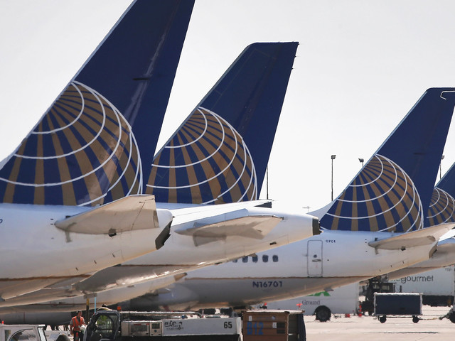 Rabbit In Running To Be World's Largest Dies On United Flight