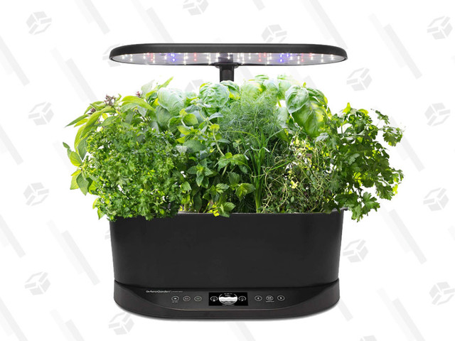 Grow Your Own Herb Garden With Ease Thanks to This Discounted AeroGarden