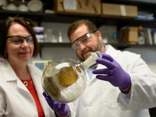 NIDA awards UF College of Pharmacy additional $3.4 million kratom grant