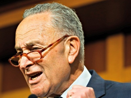 Schumer: Odds Are Against Having Witnesses in Impeachment Trial