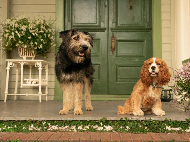 Walt Disney Studios Shares Second Trailer for 'Lady and the Tramp' Coming Exclusively to Disney+