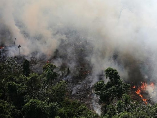 Bolsonaro Admits Farmers May Have Started Amazon Wildfires, Warns World Not To Interfere