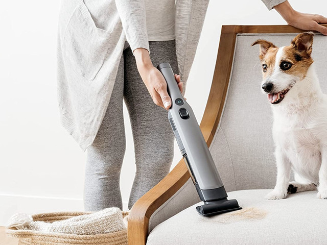 The best handheld vacuums for pet hair: Keep your home and car cleaner with these picks