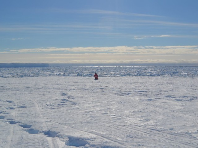 Lonely Antarctic Expeditions Shrink People's Brains