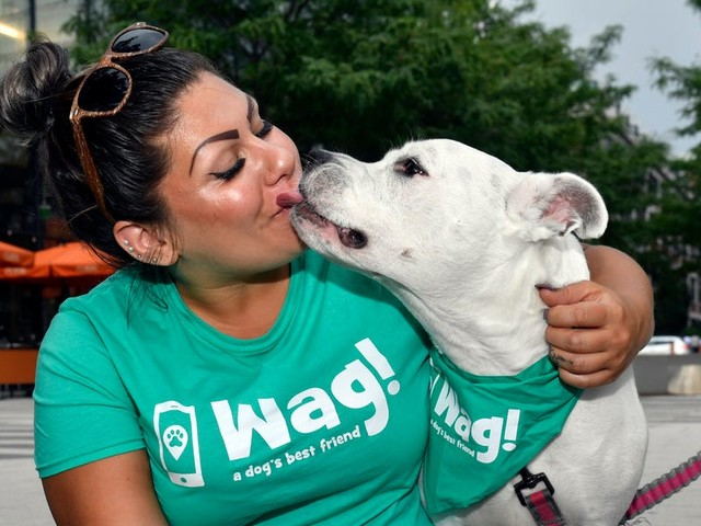 Wag's dog walkers are secretly rating your precious pet