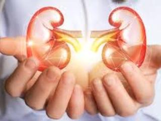 10 Early Warning Signs Of Kidney Disease - Medtrend Health