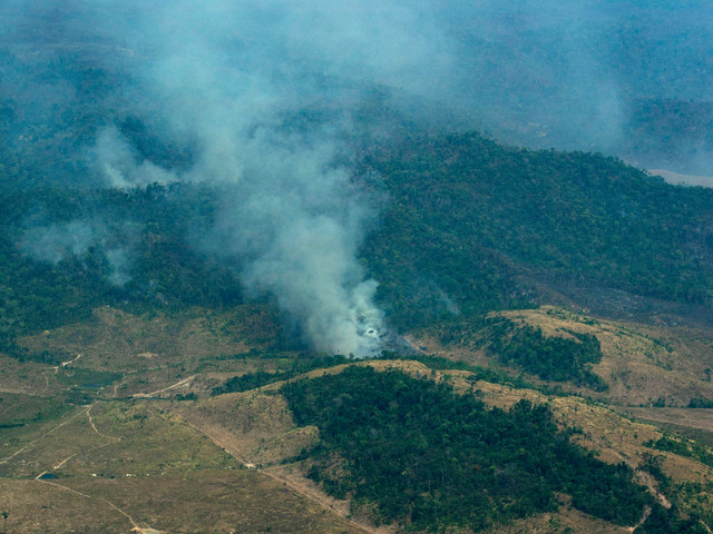 Brazil ramps up environmental policing amid outrage over Amazon fires