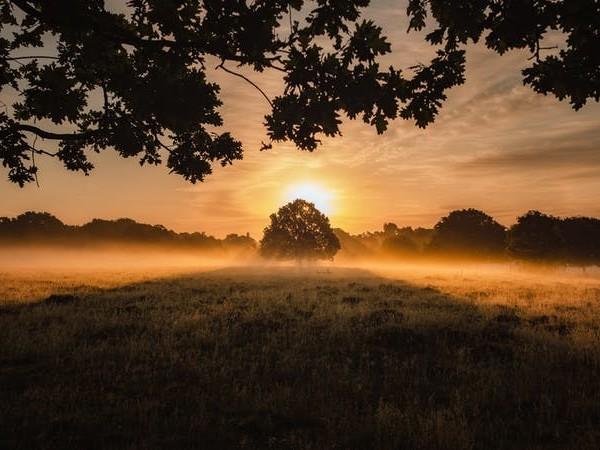Joy's Eternal Sunrise: Why Heaven Will Never Be Boring
