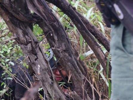 Exclusive Video: Network of Mexican Cartel Smuggling Trails on Texas Soil, Says Border Patrol Supervisor