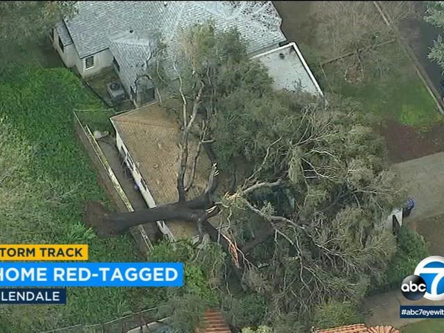 Massive tree crushes home in Glendale