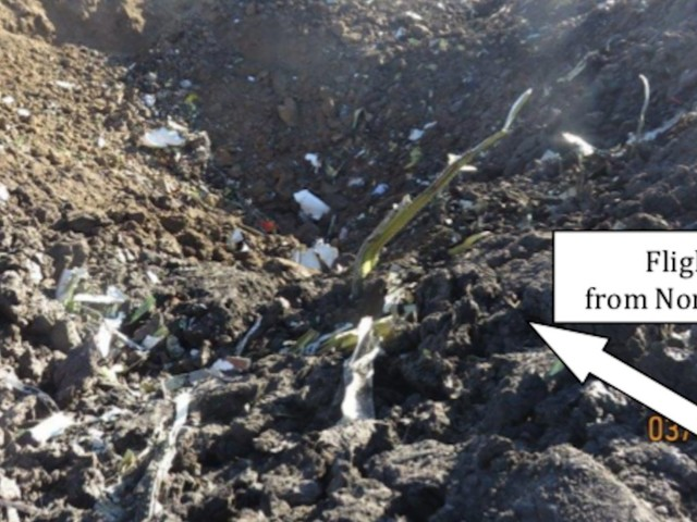 The crashed Ethiopian Airlines 737 Max hit the ground at 575mph and left a crater 32 feet deep, horrifying details in official report reveal