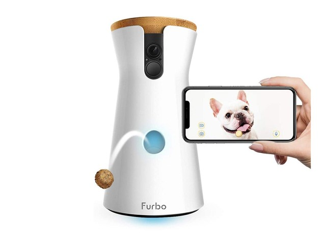 Is The Furbo Dog Camera Worth The Hype? An Investigation