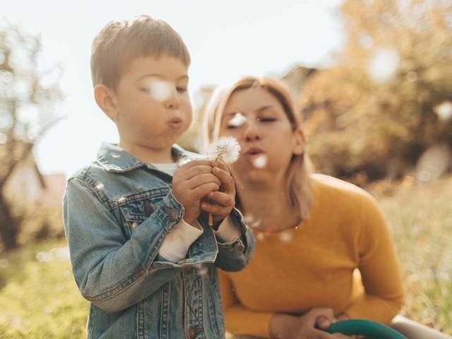 16 Health Benefits of Dandelion