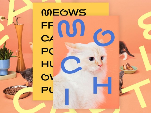 This cat font rules (and dog fonts drool)