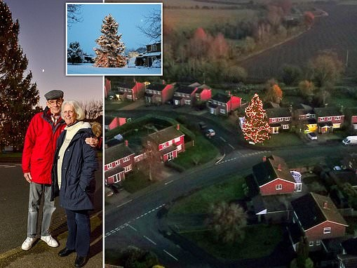 Festive couple light up one of Britain's darkest villages by decorating 40-year-old Christmas tree