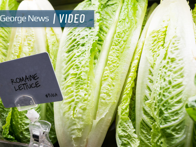Romaine lettuce-linked E. coli outbreak reported in nearby states, local businesses taking precautions