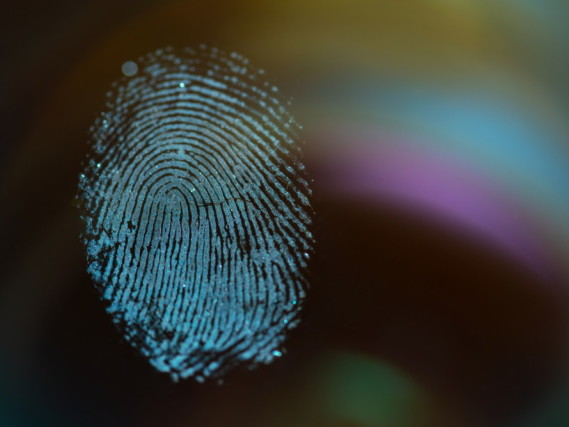 The US shows a 'concerning lack of regard for the privacy of people's biometric data'