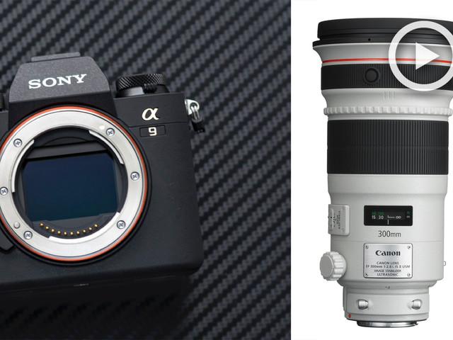 Sony A9 vs Adapted Long Lenses | Reality Vs Expectations