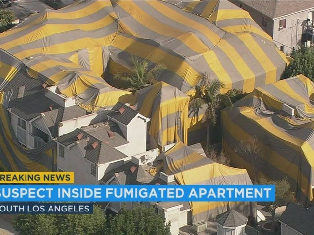 SWAT team searches for burglary suspect at South LA building tented for fumigation
