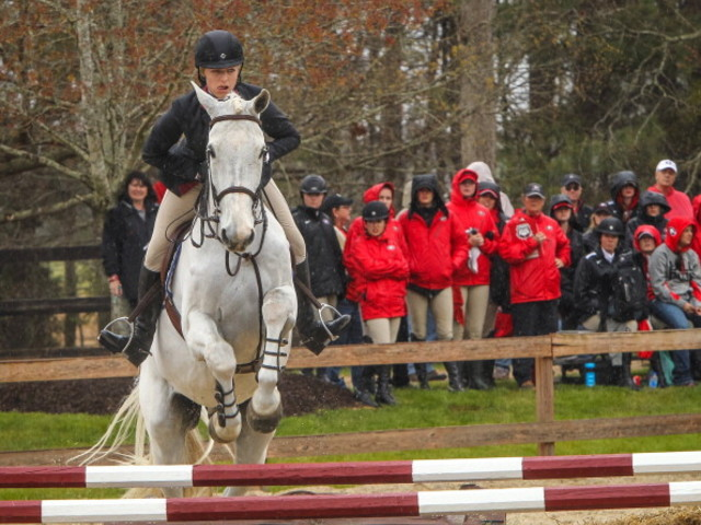 Despite downsizing on a few campuses, college equestrian programs riding high