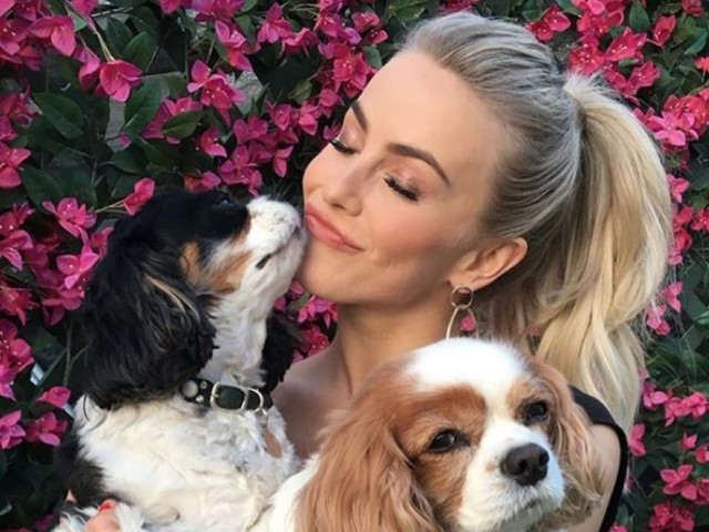 Julianne Hough posts heartbreaking tribute to her dogs who passed away on the same day