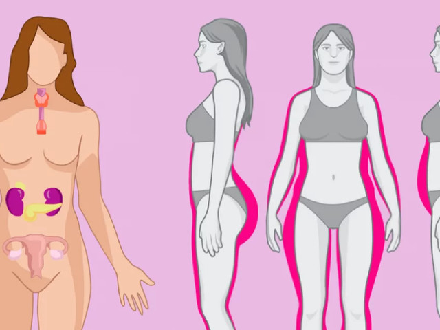 When Unbalanced, These 4 Hormones Prevent You From Losing Weight: Here's How To Balance Them
