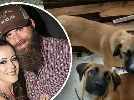 Jenelle Evans' husband David Eason shows off two NEW dogs on their property