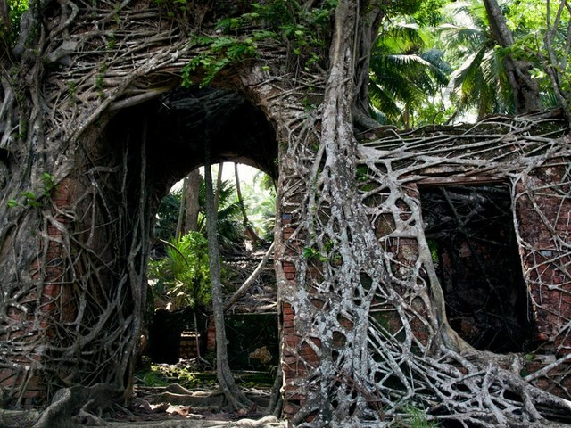 Take a look around an eerie, abandoned island that was once used as a prison hundreds of miles off the coast of India